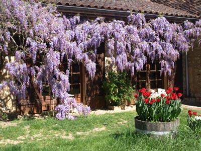 11SME Dordogne Gite Mireille