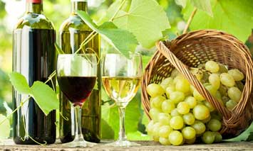 winetaste355